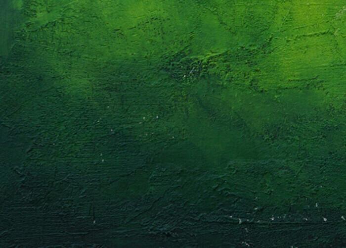 ירוק קלוזאפ2